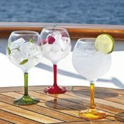 COPA GIN PARTY                         MARINE BUSSINES